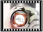 Wall-Camera-woman-Capture